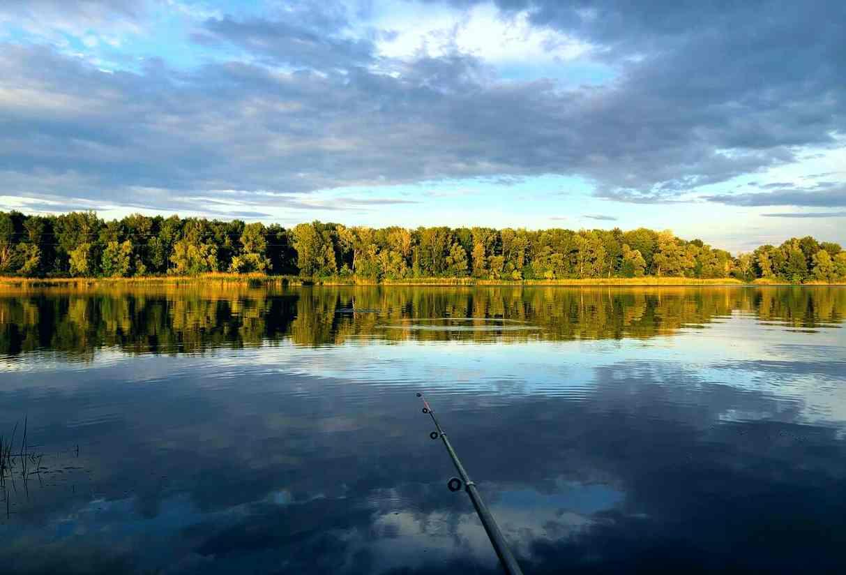 Рыболовные удилища на сайте fishing-market.com.ua